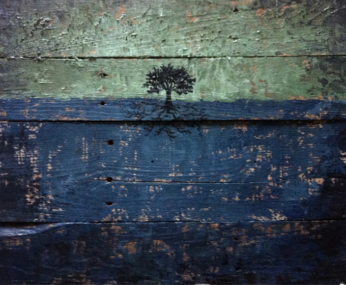 barnwood trees